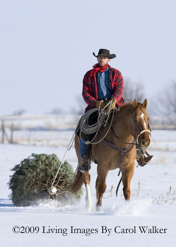 17 Best Images About Cowboys And Snow On Pinterest Snow