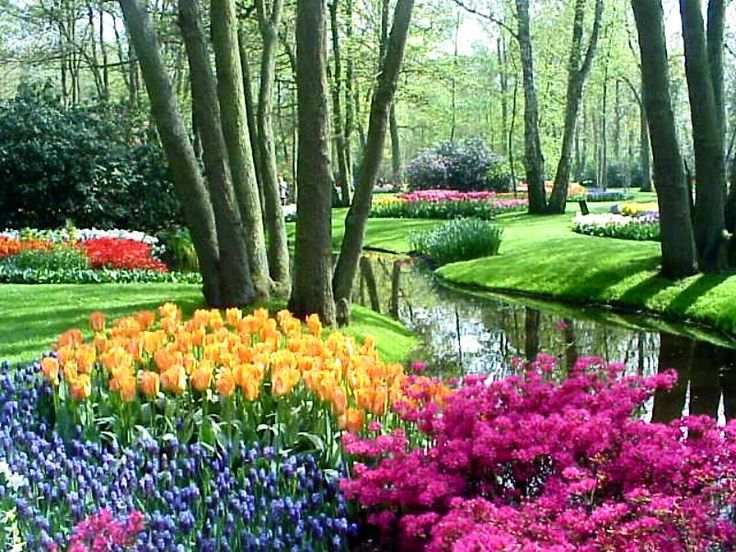 Gambar Taman Bunga Yang Unik Ide buat Rumah Pinterest