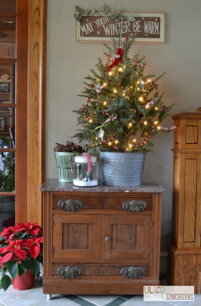 small Christmas tree - love this fresh tree in a tin bucket: