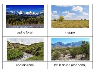 Biomes Definitions And Types Of