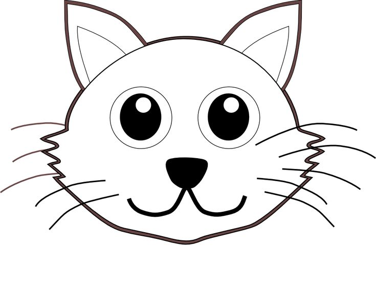 coloring pages raccoon animal coloring pages minion coloring pages