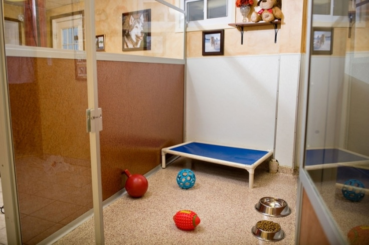 61 Best Images About Dog Hotel Ideas On Pinterest