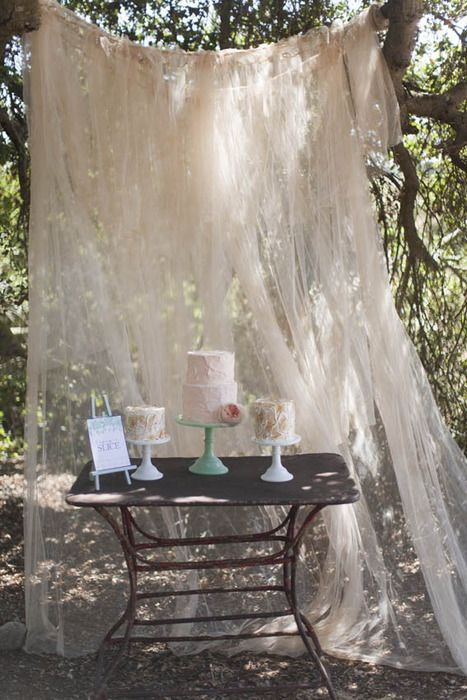Best 25 Tulle Backdrop Ideas On Pinterest