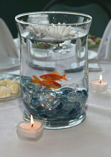 25 Best Ideas About Goldfish Centerpiece On Pinterest