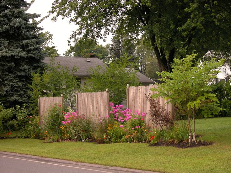 1000+ Ideas About Privacy Fence Landscaping On Pinterest