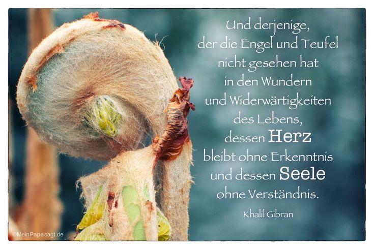 Image Result For Zitate Neuanfang Bibel