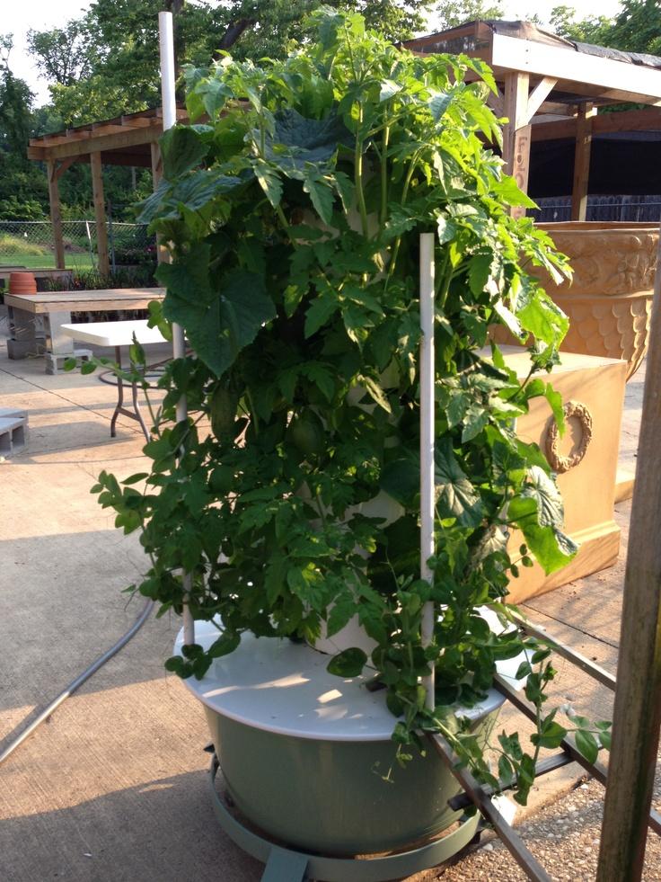 Hydroponic Tower garden VERTICAL GARDENS Pinterest