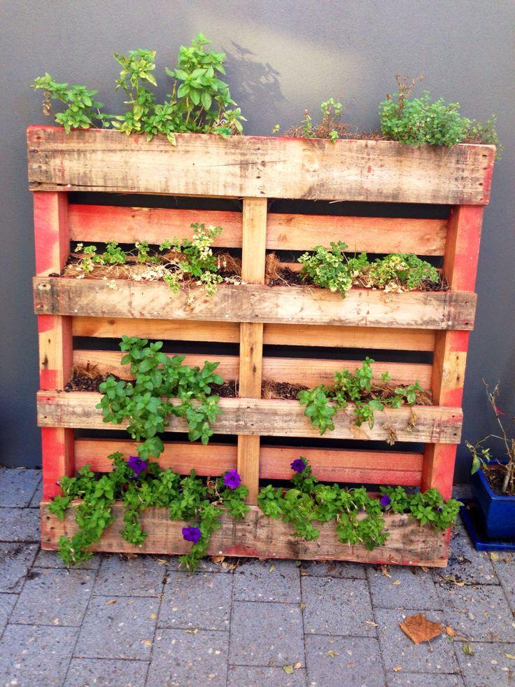 DIY vertical pallet herb garden! Gardening Ideas