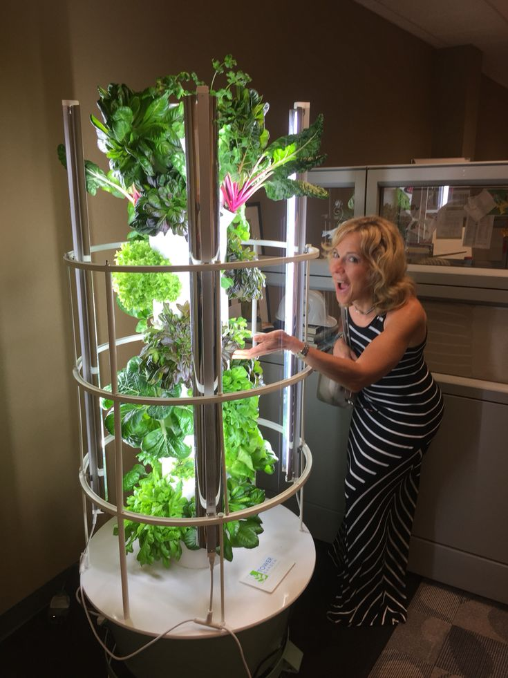 Grow year round with indoor growing Tower Garden