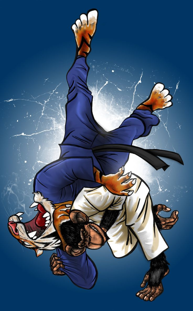 judo wallpaper Google Search flyers 4 inspiration