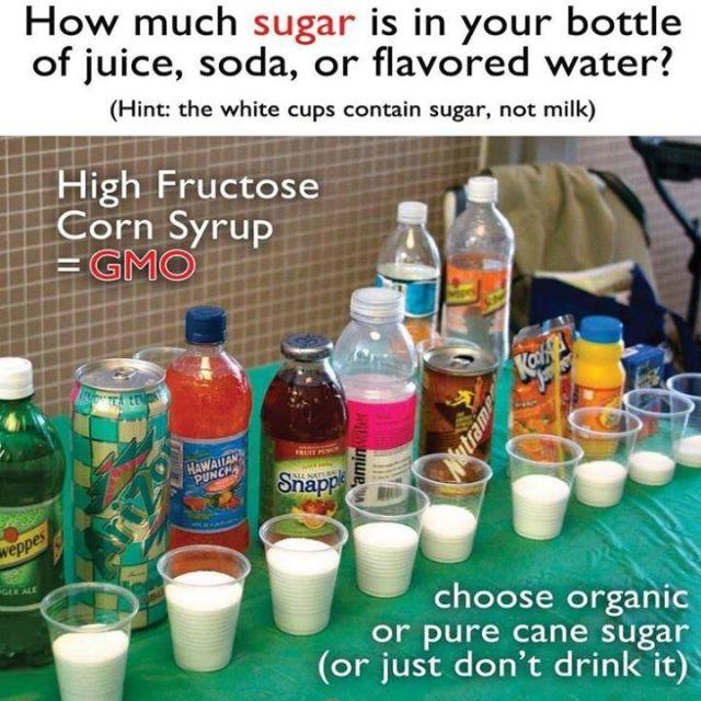 Image result for gmo sugar beets