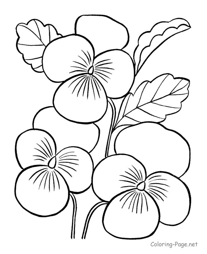 1000 ideas about flower coloring pages on pinterest coloring