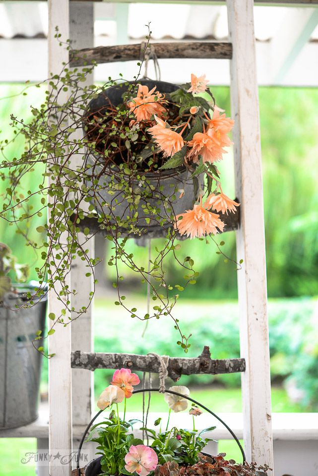 A nature inspired branch ladder plant stand Flower