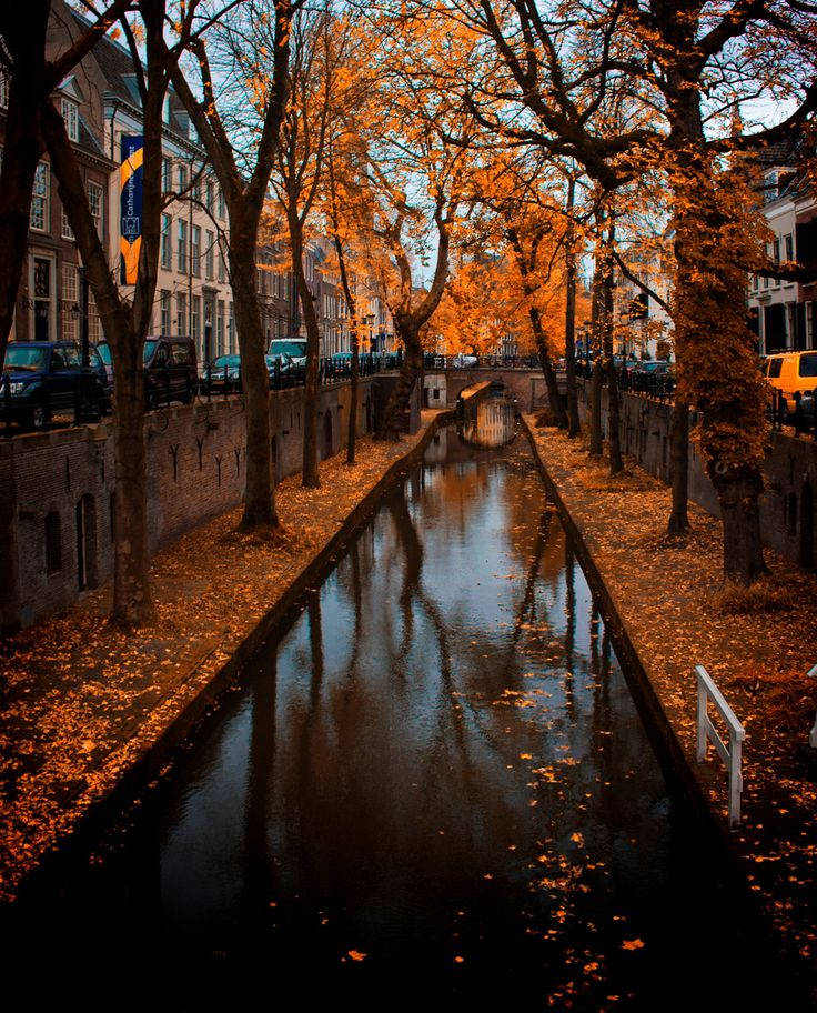 Autumn in Utrecht, Netherlands Herfst Pinterest