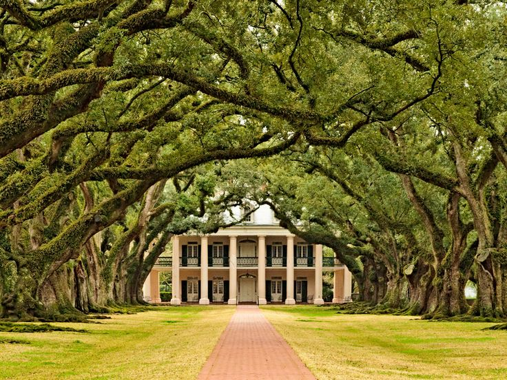 Oak Alley Plantation Louisiana Photography Pinterest
