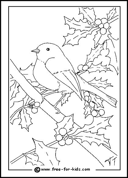 christmas tree coloring page on pinterest coloring pages christmas