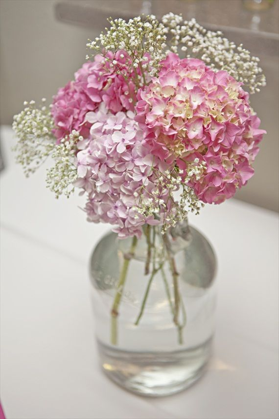 pink hydrangeas and baby's breath in glass vase – photo by Shillawna Ruffner Photography