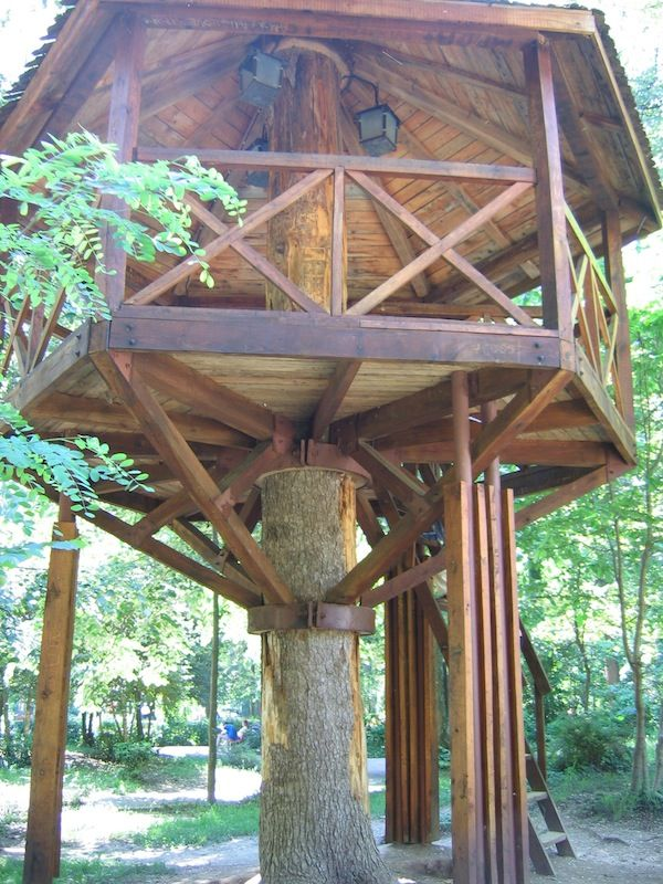 18 Best Images About Treehouse On Pinterest Kid Tree
