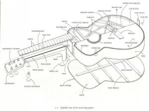 guitar drawing image | This is an exploded view of a steel