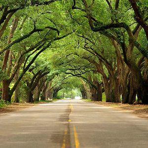 27 Best Images About TRAVEL Aiken SC On Pinterest Parks