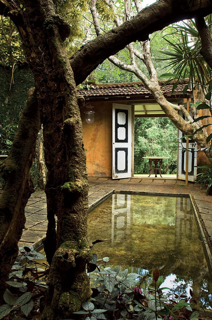 a photographic tour of the beautiful gardens of two sri