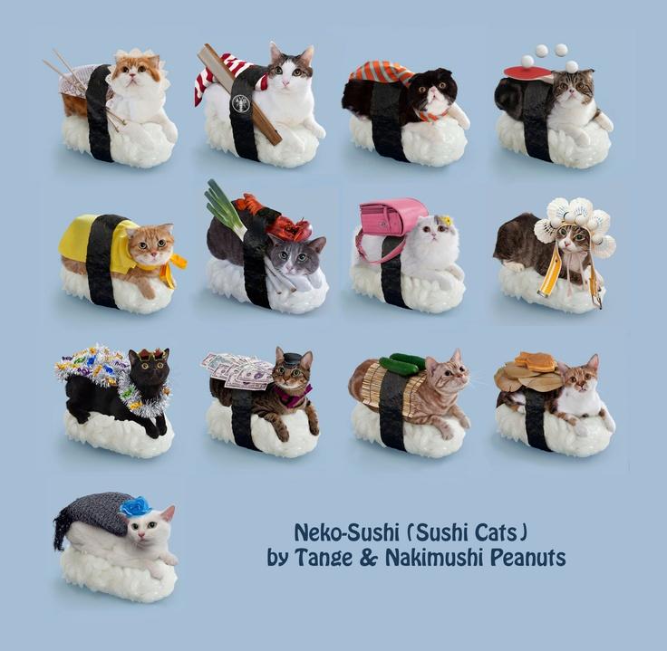 NekoSushi (Sushi Cats ) by Tange & Nakimushi Peanuts The