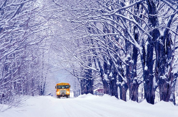 Old Fashioned Winter Christmas Scenes Going To School On