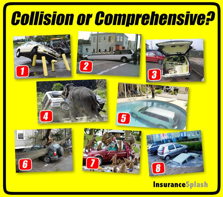 Collision or Comprehensive insurance coverage? You make