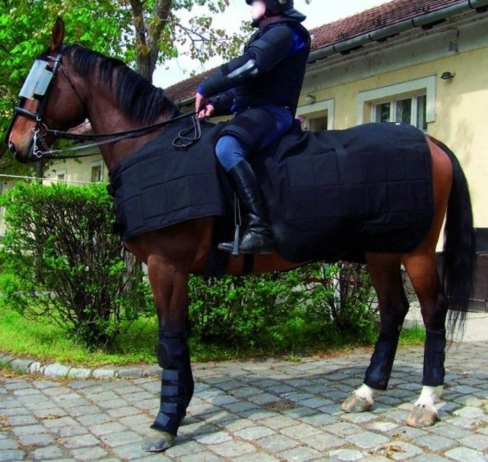 Horse High Impact Protection Riot Use blanket (can have