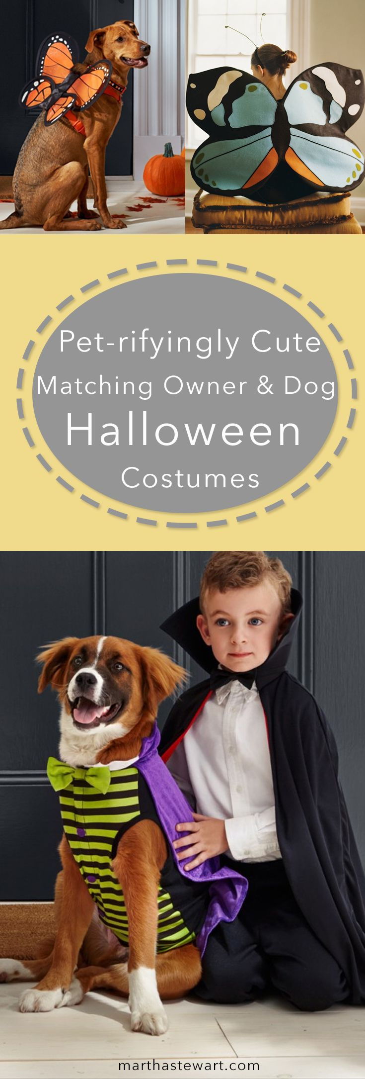 Matching Owner and Dog Costumes for a Petrifyingly Cute