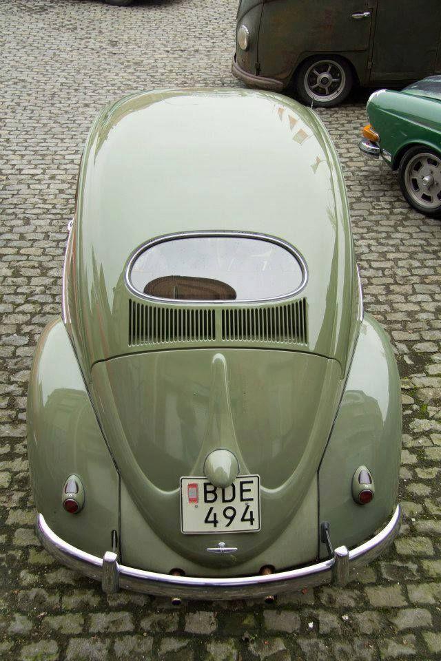 Oval Rear Window VW Small European Cars Pinterest