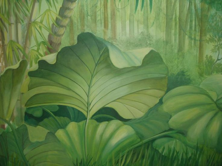 23 Best Images About Jungle Murals On Pinterest Jungle Decorations Peeping Tom And Forest Mural