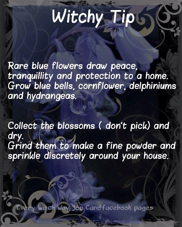 1322 Best Images About All Things WiccanPagan On Pinterest Goddesses Spiritual Quotes And