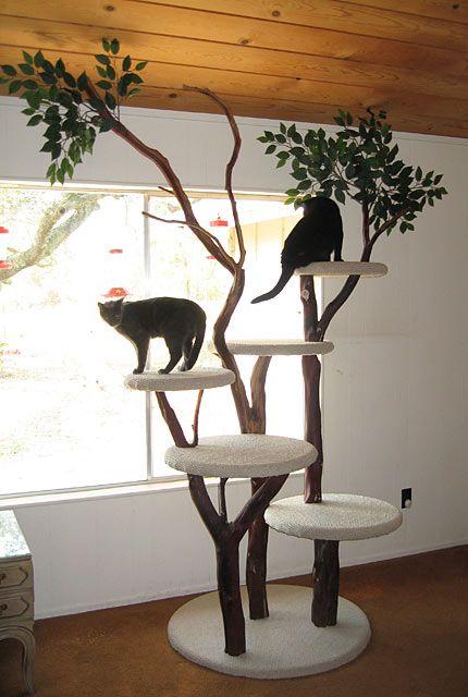 Die 25 Besten Ideen Zu Katzenkratzbaum Auf Pinterest
