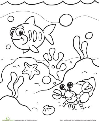 1000 ideas about ocean coloring pages on pinterest adult