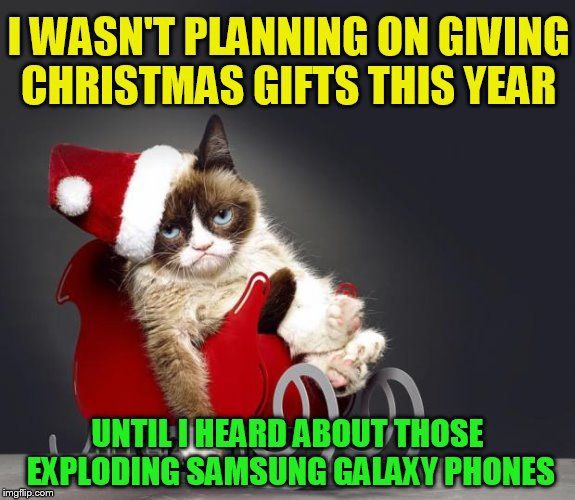 1000 Ideas About Grumpy Cat Christmas On Pinterest