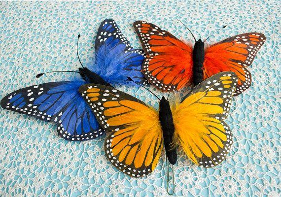 1000 Images About Birds Amp Butterflies On Pinterest