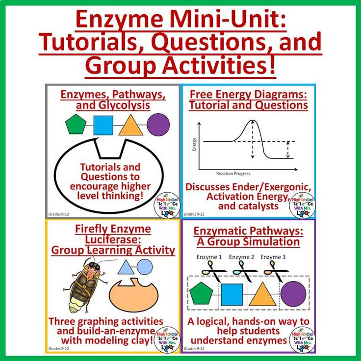 Enzymes MiniUnit Worksheets, Graphing Activities, and