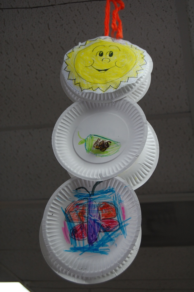 First Grade Food Chain Teach Pinterest Food chains
