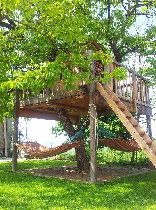 Treehouse fort and hammocks