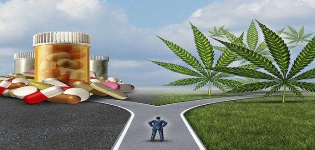 Image result for Inside big pharma's fight to block recreational marijuana
