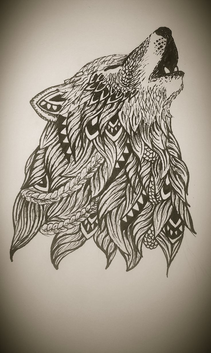 zentangle and wolves on pinterest