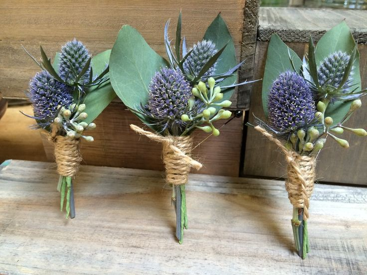 25+ Best Ideas About Thistle Boutonniere On Pinterest