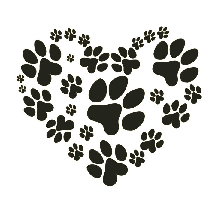 Puppy Paws Dog Paws Silhouette Pinterest Pets