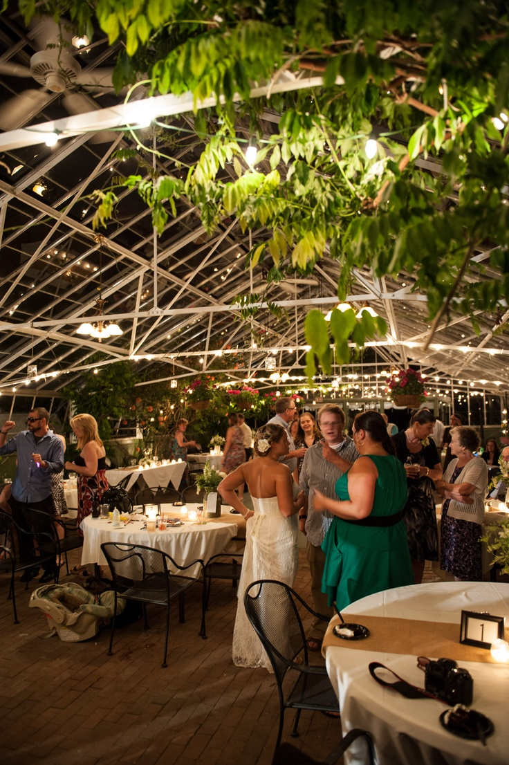 1000 Images About Common Man Greenhouse On Pinterest Plymouth Romantic And Receptions