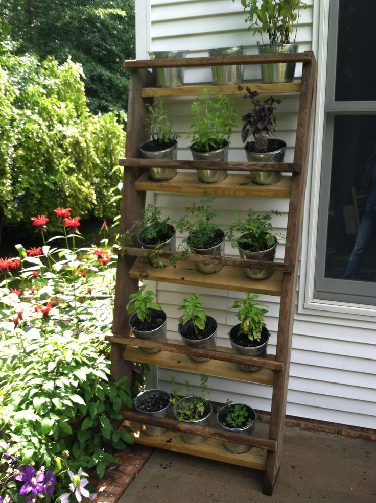 Well the hubby made it vertical herb garden Stuff I