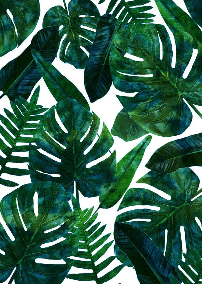 Shower Curtain Tropical Palm