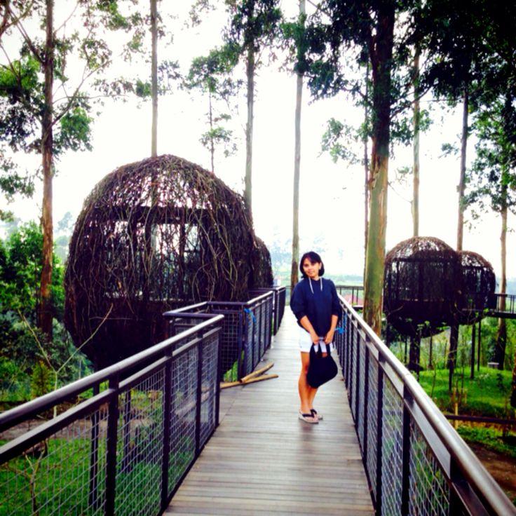 Dusun Bambu, Cisarua, Bandung Barat Indonesia
