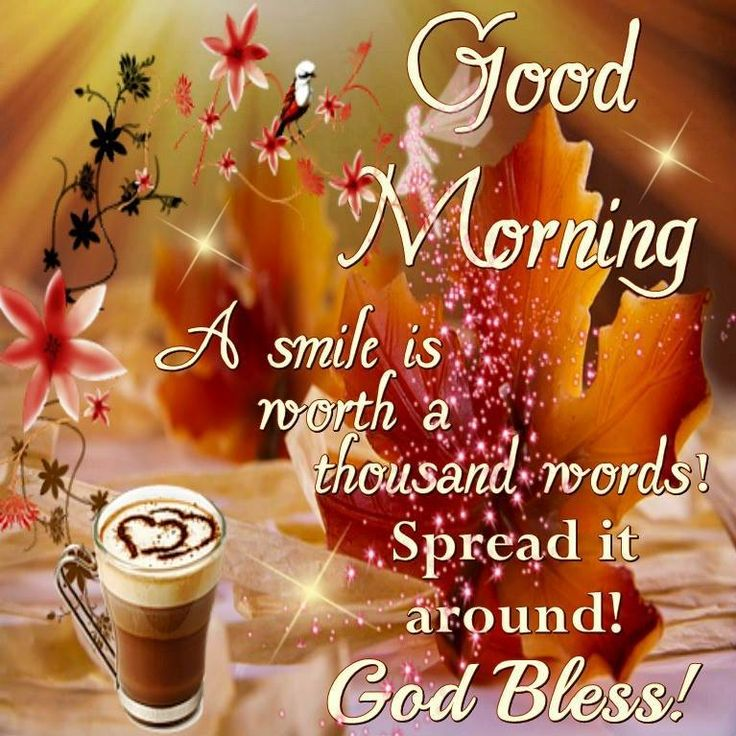 Good Morning Everyone, Happy Friday. I pray that you have