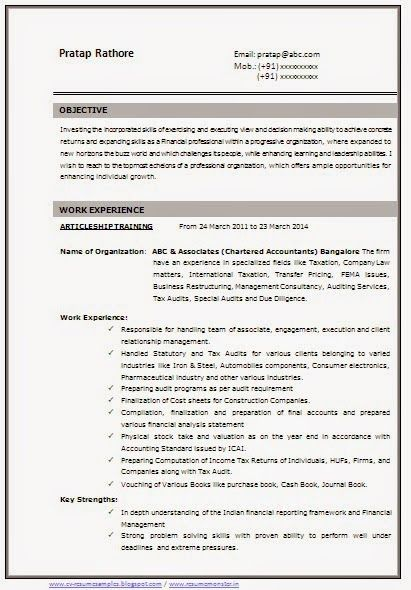 resume format html and cv format on pinterest
